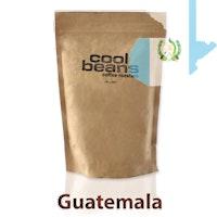 Cool Beans Guatemalan Santa Barbara
