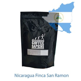 Coffee Sapiens Nicaragua Finca San Ramon
