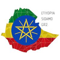 Overdose Coffee Etiyopya Sidama Gr2