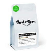 Band of Beans Guatemala-Finca La Providencia