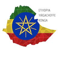 Overdose Coffee Etiyopya Yirgacheffe Konga