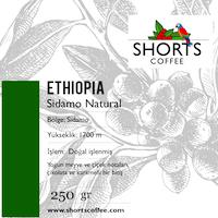 Shorts Coffee Sidamo Filtre Kahve