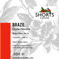 Shorts Coffee Brazil Filtre Kahve